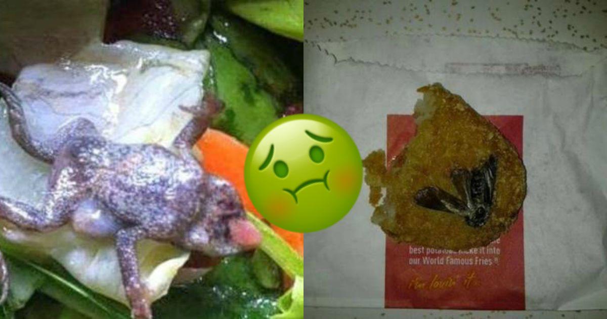 10 cosas asquerosas encontradas en McDonalds, Burger King, KFC y supermercados