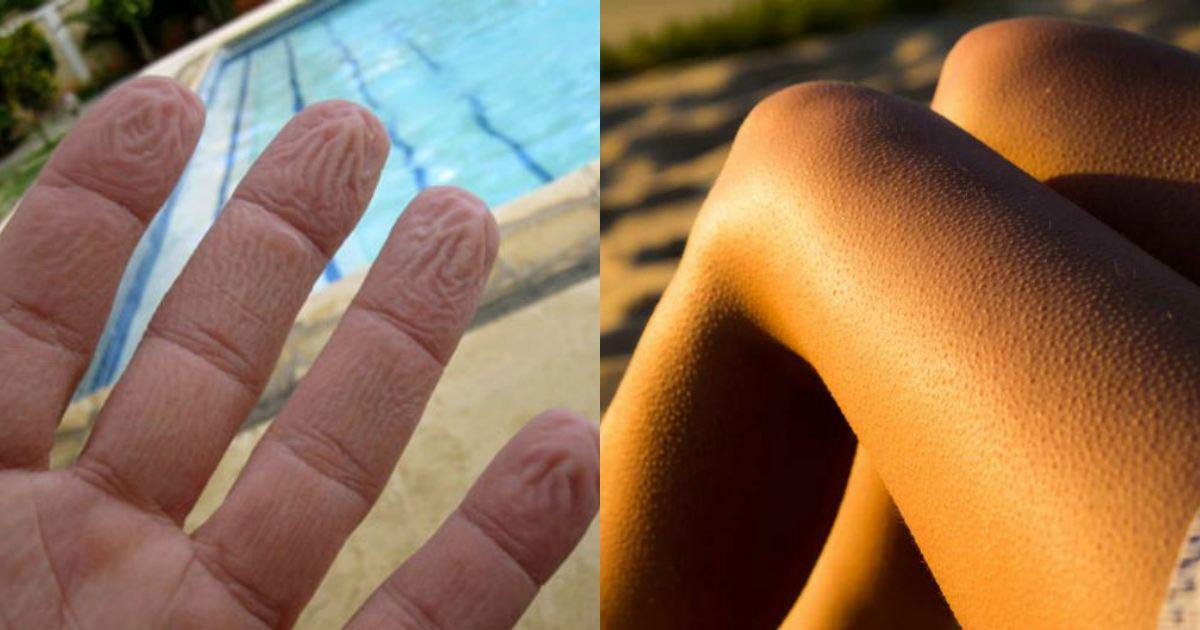 9 cosas que hace tu cuerpo frecuentemente y que no sabias para que funcionaban